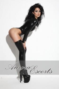 London escort girl Holly