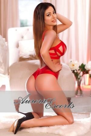 London escort girl  Cecilia