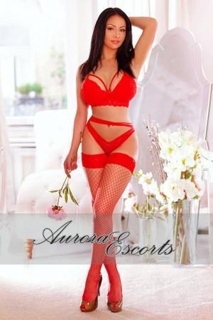 London escort girl  Steffy
