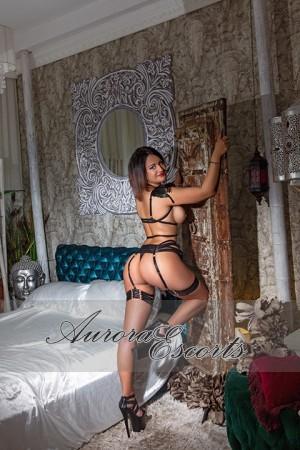 London escort girl  Elena